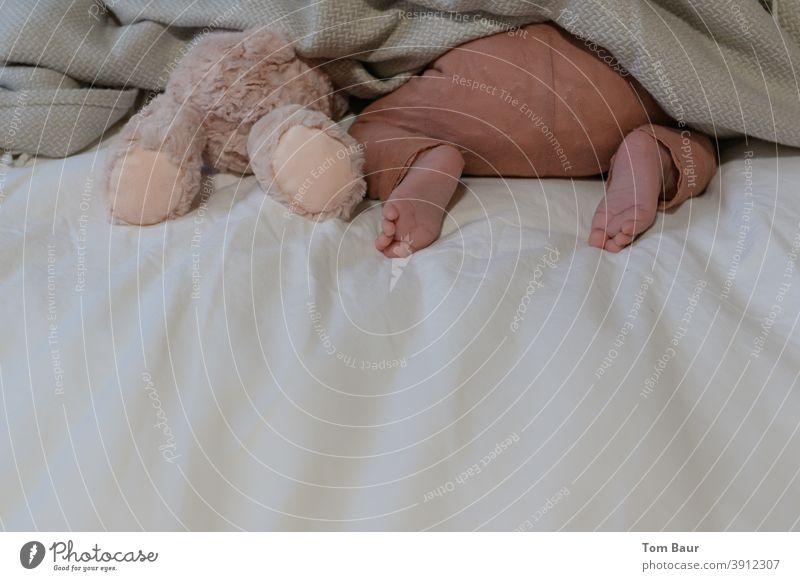 Wir spielen verstecken - Baby steckt neben einem Teddybär mit dem Kopf unter der Bettdecke es ist nur der Po und die nackten Füsslein zu sehen Babyfüße