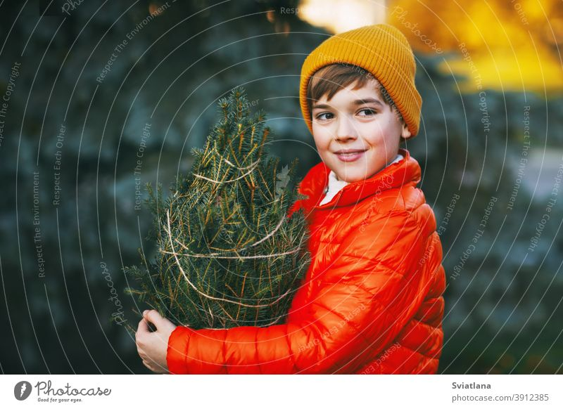 Ein Junge in leuchtend oranger Jacke und gelber Mütze hält einen gekauften Weihnachtsbaum in den Händen, lächelt und schaut in die Ferne. Einkaufen für die Feiertage. Vorbereitungen für Weihnachten, Neujahr