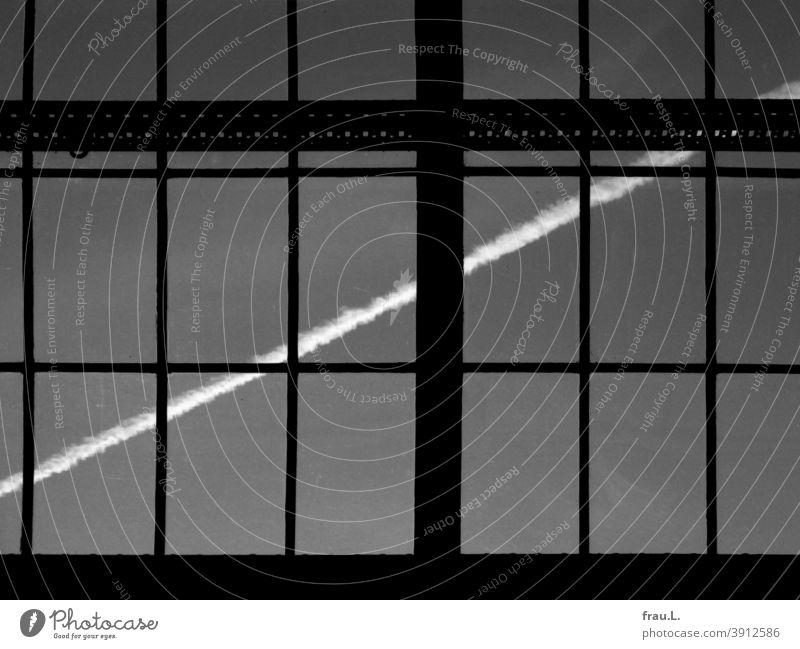 Es ist doch ein Kreuz mit den Chemtrails ... Kondensstreifen Himmel Klimaerwärmung Luftverkehr Flugzeug Fenster Verschwörungstheorie