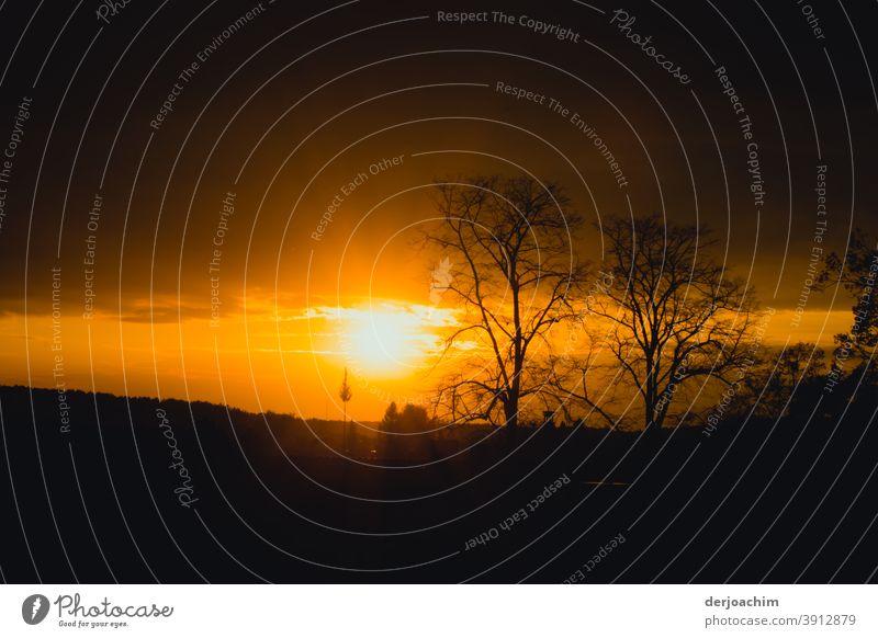 Ein Tag geht zu Ende Sonnenuntergang Himmel Abend Abenddämmerung Landschaft Natur Horizont Licht Außenaufnahme schön orange Sonnenlicht Sommer Menschenleer