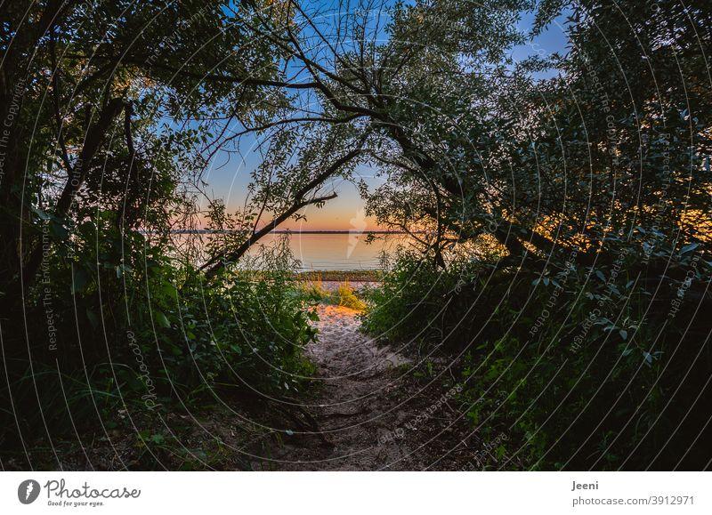 Waldiger Strandzugang mit sandigem Weg | Warmer Sommerabend am Meer mit blauem Himmel und schönem Sonnenuntergang Sommersonnenwende strandzugang Abend