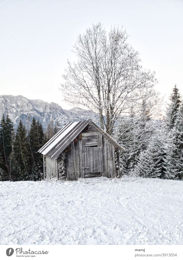 Leicht angeschneite Holzhütte mit Baum. Schnee im Vordergrund, Berge und Wald im Hintergrund. Morgenfrost kalt außergewöhnlich Heustadel Hütte Frost Eis Herbst