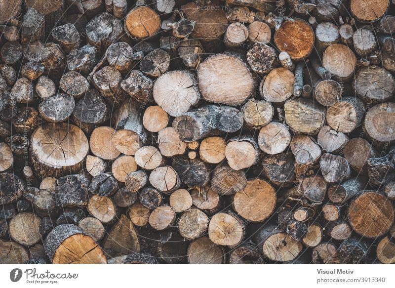 Detail von gestapelten Holzscheiten, die für die Verwendung als Brennholz vorbereitet sind Totholz Stapel Landschaft rustikal Holzstapel Ressource Textur