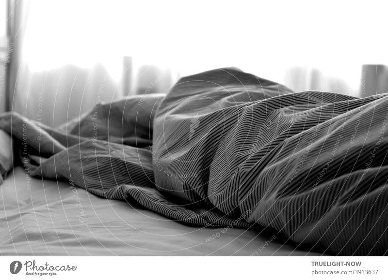 Bettgeschichten. Längst ist der helle Tag erwacht, das kuschelige Bett noch nicht gemacht. Zerknittert und gestreift die Decke liegt im Licht, doch von der Nacht Geheimnis spricht sie nicht