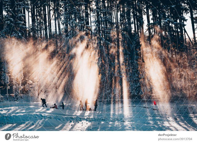 Menschen mit Schlitten im Gegenlicht im Harz II Joerg Farys Nationalpark Naturschutz Niedersachsen Winter harz naturerlebnis naturschutzgebiet naturwunder
