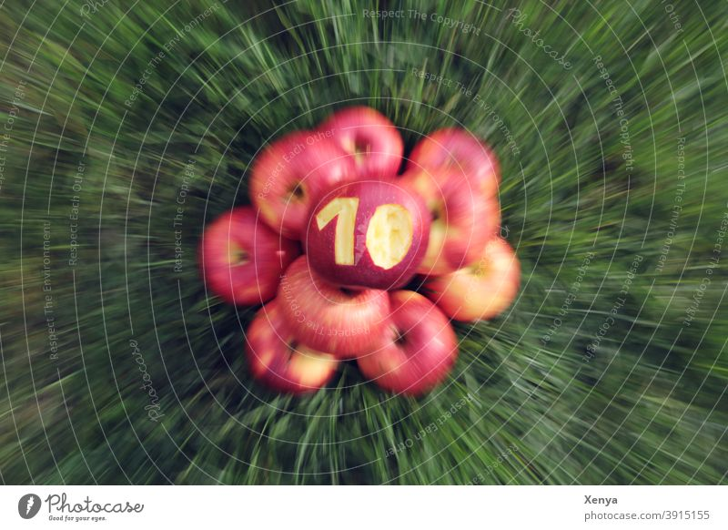 10 Jahre Photocase - Hurra! Äpfel Zoom Gras grün rot Unschärfe zehn Herbst Sommer Frucht Ernte reif Lebensmittel Garten natürlich Gesundheit lecker Apfel Natur