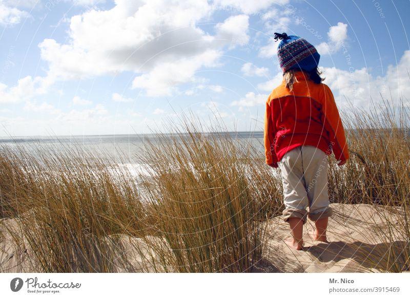 Aussichtsposten Strand Landschaft Stranddüne Erholung Natur Sommerurlaub Freiheit Ausflug Abenteuer Ferne Pflanze ruhig Wetter Umwelt natürlich entdecken Düne