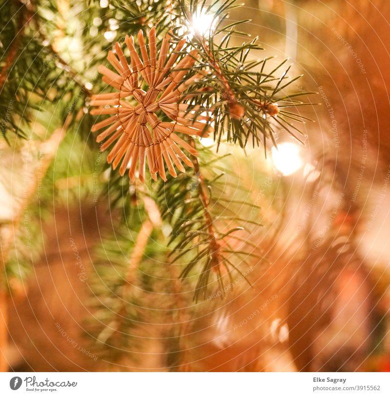 Strohstern am Weihnachtsbaum Weihnachten & Advent Weihnachtsdekoration Dekoration Feste & Feiern Menschenleer Farbfoto Innenaufnahme