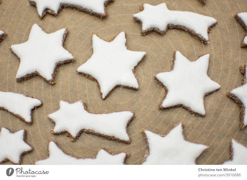 weiße Zimtsterne liegen auf Backpapier auf einem Backblech selbstgebacken Weihnachtsplätzchen Plätzchen Plätzchen backen Weihnachtsbäckerei Plätzchen ausstechen