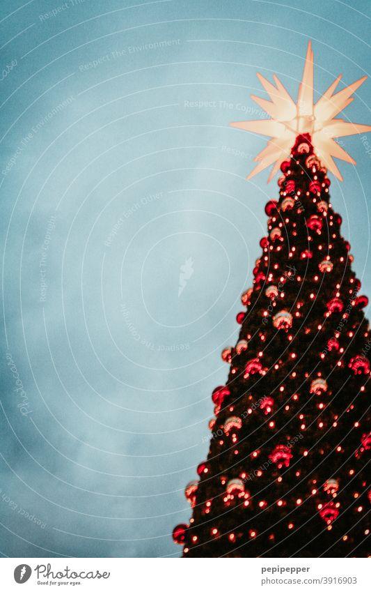 Weihnachtsbaum mit Weihnachtsstern und Weihnachtskugeln Weihnachten & Advent Weihnachtsdekoration Dekoration & Verzierung Feste & Feiern Stern (Symbol) glänzend