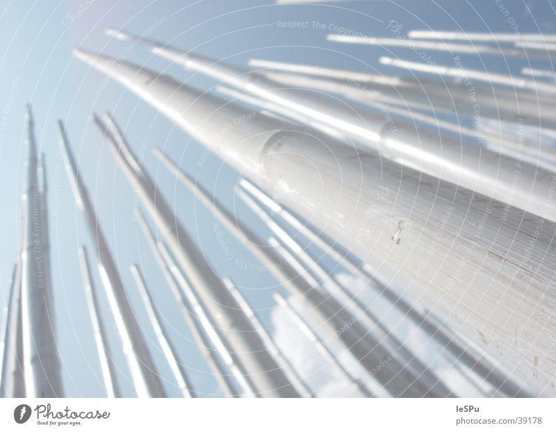Bambus Stock streben Horizont Aussicht zielstrebig obskur Bambusrohr Himmel aufwärts Makro. Fluchtpunkt Freiheit Ziel