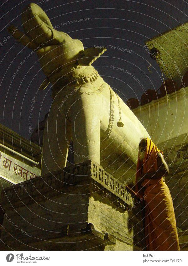 Saddhu Elefant Indien Hinduismus Tempel Nacht Ritual Naher und Mittlerer Osten Aussicht heilig Pilgerer ungleich