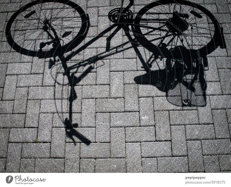 Fahrradschatten fahrradschatten Schatten Straße Fahrradfahren Verkehr Außenaufnahme Verkehrsmittel Verkehrswege Wege & Pfade Straßenverkehr Mobilität Stadt