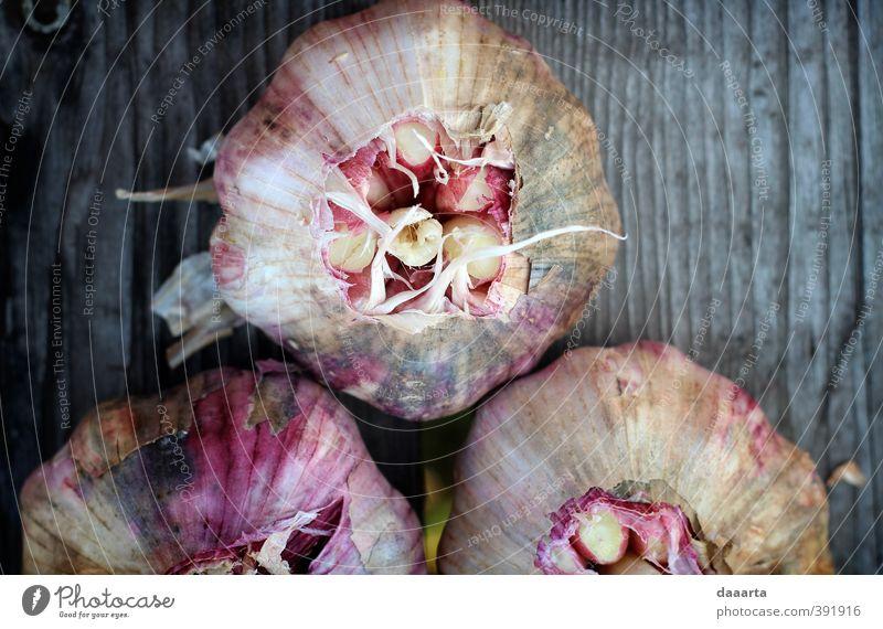 Natur Pflanze schön Leben Liebe Gesundheit Lebensmittel glänzend Zufriedenheit elegant Fröhlichkeit Freundlichkeit Neugier Kräuter & Gewürze Sehnsucht Gemüse