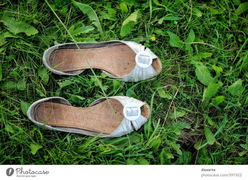 Natur grün Sommer weiß Blume Landschaft Leben Wiese Gras natürlich feminin Glück lachen Denken Garten Schwimmen & Baden