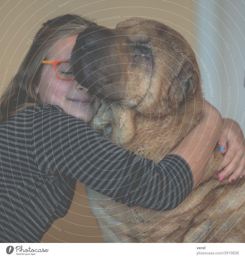 Mädchen mit Hund Farbfoto Gelassenheit ruhig Träume zufrieden Innenaufnahme Fell Kopf Haustier Hundekopf Schnauze träumen unschuldig Tierliebe Erholung