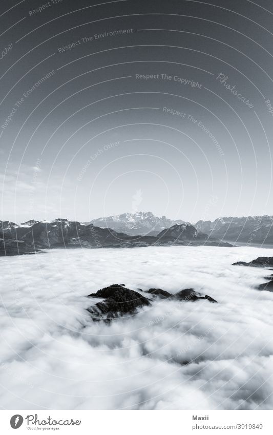 Nebelmeer Umwelt Himmel Wolken Sonnenlicht Schönes Wetter Baum Wiese Wald Alpen Berge u. Gebirge Gipfel Schneebedeckte Gipfel wandern Farbfoto mehrfarbig