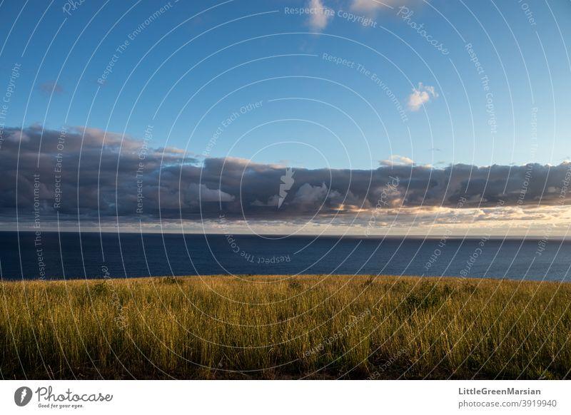 Blick auf das Meer am Morgen Meereslandschaft Wolken Blauer Himmel Sonnenlicht Farben Schattenspiel Licht Gras Feld grün blau Wasser kräuselt Wellen Seeküste