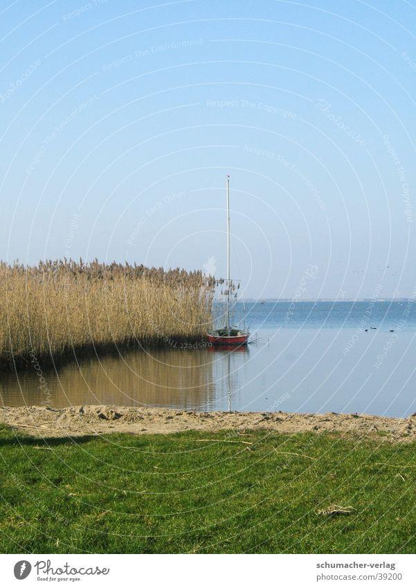 Binnensee See Meer Horizont Gras Strand Rietgras Küste