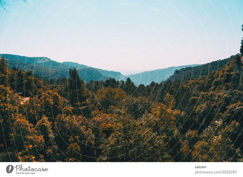 Landschaft der Prades-Berge, in Tarragona, Spanien. prades Katalonien ohne Menschen im Freien mittelgroß Textfreiraum Porträt vertikal Farbe Top Gesäß