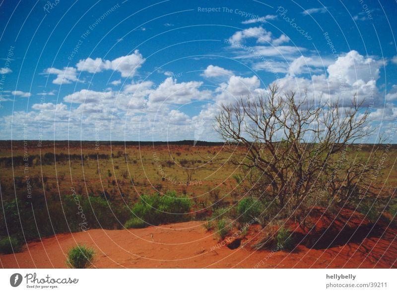 outback Ferne Wüste dünn Australien Outback