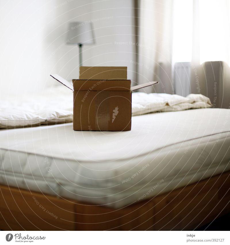 Neugier... Lifestyle Häusliches Leben Umzug (Wohnungswechsel) einrichten Lampe Bett Raum Schlafzimmer Vorhang Menschenleer Verpackung Paket Karton Pappschachtel