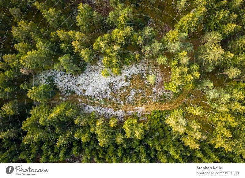 Luftaufnahme eines verschneiten Waldes mit einer kleinen Landstraße. Von oben mit einer Drohne aufgenommen Baum Winter Natur Antenne Kiefer Landschaft im Freien
