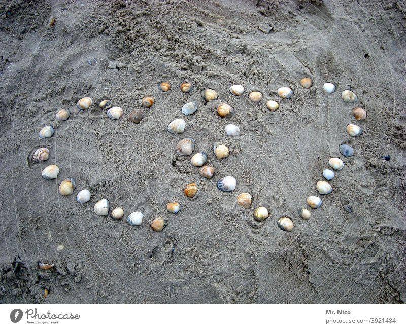 konform I herz in herz Herz Symbol Strand Muscheln Romantik Verliebtheit Liebe herzlich Zeichen Liebesbekundung herzförmig Liebeserklärung Sandstrand Ufer