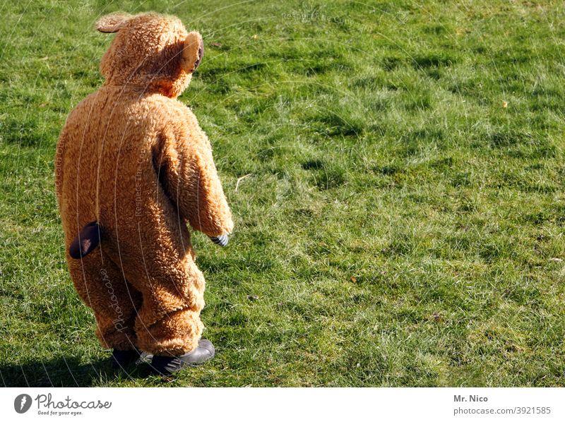 Kleiner Bär Tier Kostüm verkleidet Wildtier Fell Karneval Karnevalskostüm Kindheit spass verkleiden Wiese Gras Rückansicht Teddybär braun kuschlig Kuscheltier