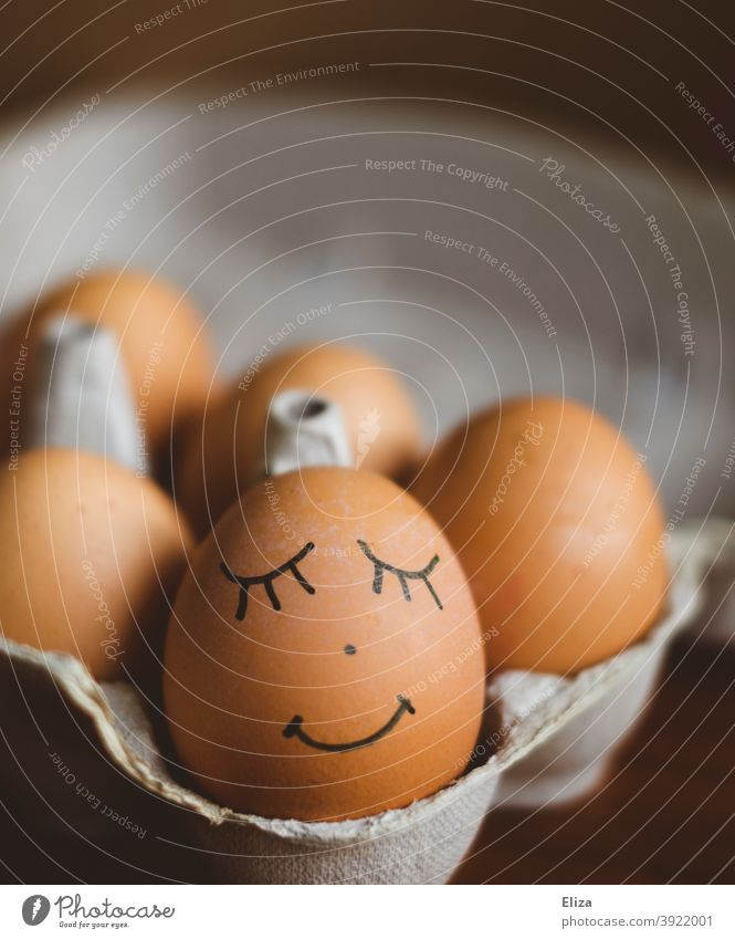 Ei mit aufgemaltem Gesicht im Eierkarton. Ostern. lächelnd osterdekoration Osterei braun zufrieden glücklich