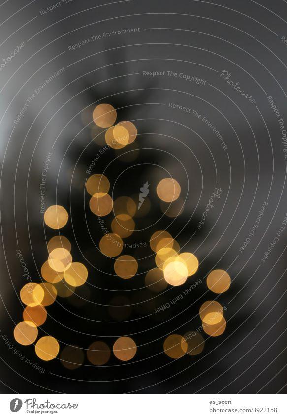 Weihnachtsbaum Licht Weihnachtsdekoration Weihnachtsbeleuchtung Dots Symbol Weihnachten & Advent Farbfoto leuchten Menschenleer Lichterkette Unschärfe