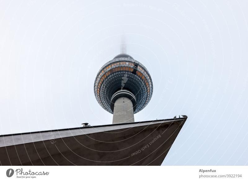 beliebte Ecke Berlins Fernsehturm Berliner Fernsehturm Architektur Alexanderplatz Berlin-Mitte Turm Himmel Außenaufnahme Bauwerk Stadtzentrum Sehenswürdigkeit