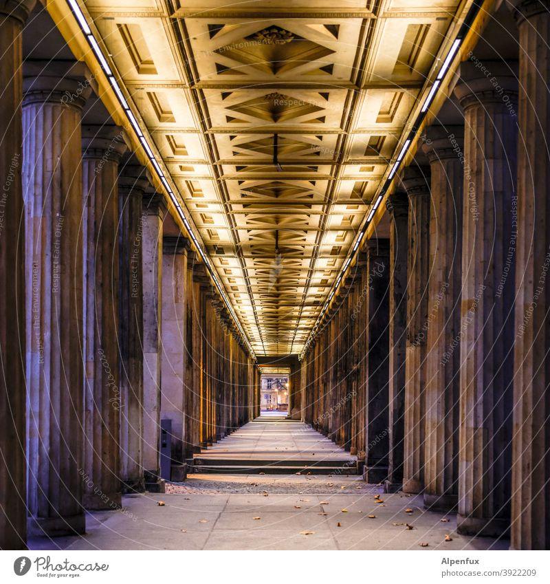 Tunnelblick Zentralperspektive Menschenleer Säulen Säulengang Architektur Farbfoto Symmetrie Sehenswürdigkeit Berlin Bauwerk Außenaufnahme Stadtzentrum