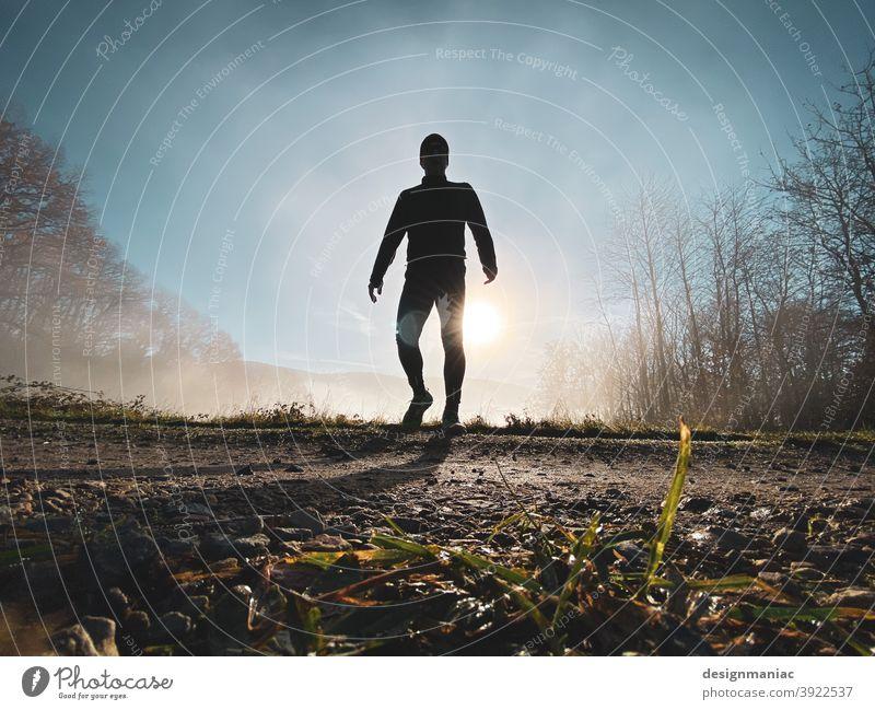Akte X: Der Jogger im Nebel Teil 3. Die Begegnung. Silhouette über den Wolken erstaunlich mystisch Akte x Bäume Wege & Pfade Gras kalt kalte jahreszeit Himmel