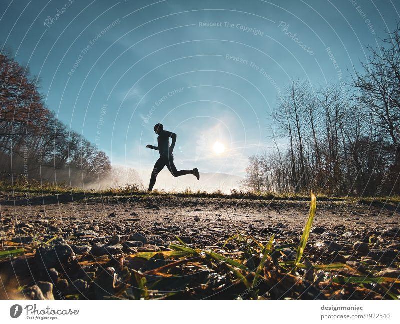 Akte X: Der Jogger im Nebel Teil 2. Die Flucht. Silhouette über den Wolken erstaunlich mystisch Akte x Bäume Wege & Pfade Gras kalt kalte jahreszeit Himmel