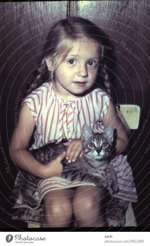 Freunde Kind Kindheit Mädchen analog Dia Scan Tier Katze Zopf Zöpfe Blick in die Kamera sitzen Kleinkind