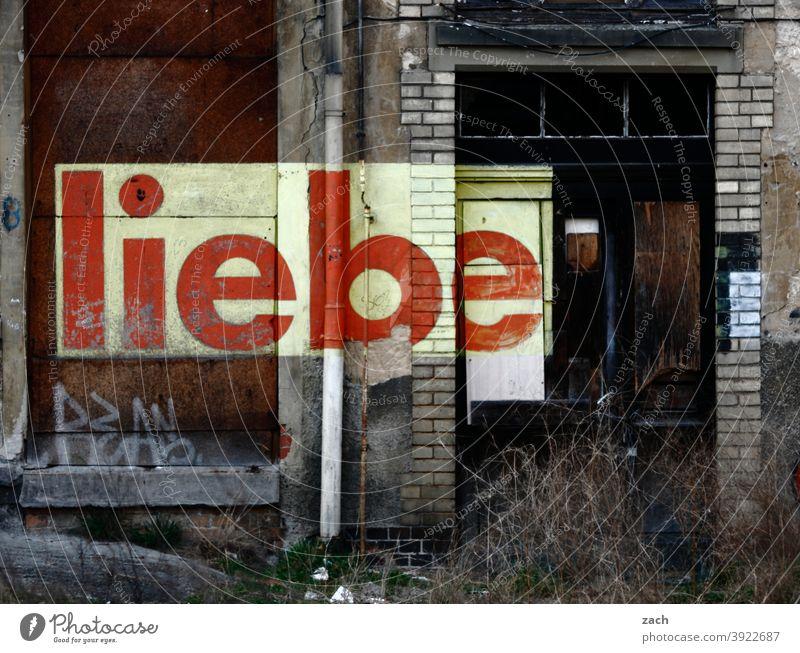 Trotz allem Farbfoto Zerstörung Vergänglichkeit Verfall Romantik Liebe braun kaputt Häusliches Leben Graffiti Schriftzeichen Zeichen Fassade Ruine Menschenleer