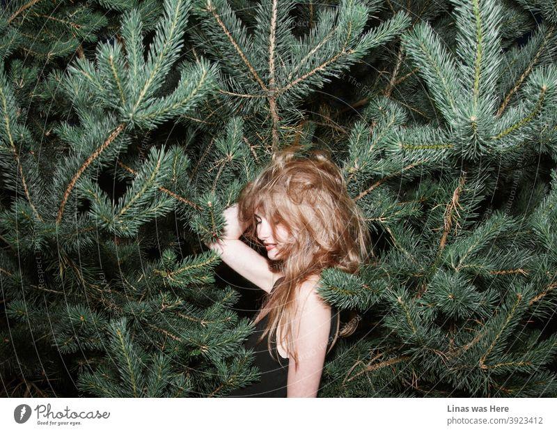Diesem Mädchen macht es nichts aus, wenn rundherum Kiefernspitzen stehen. Sie hat Spaß, egal was passiert, auch wenn es ein schlechter Haartag ist.