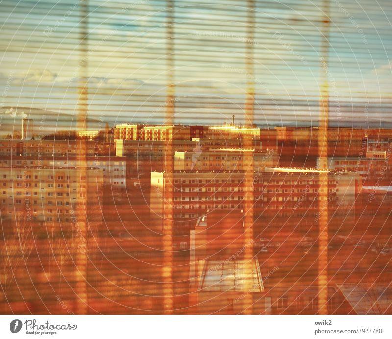Durch die Lamellen Bambusrollo Jalousie Rollo Durchblick Fensterscheibe Glas Detail Aussicht Detailaufnahme dünn durchsichtig häusliches Leben durchscheinend