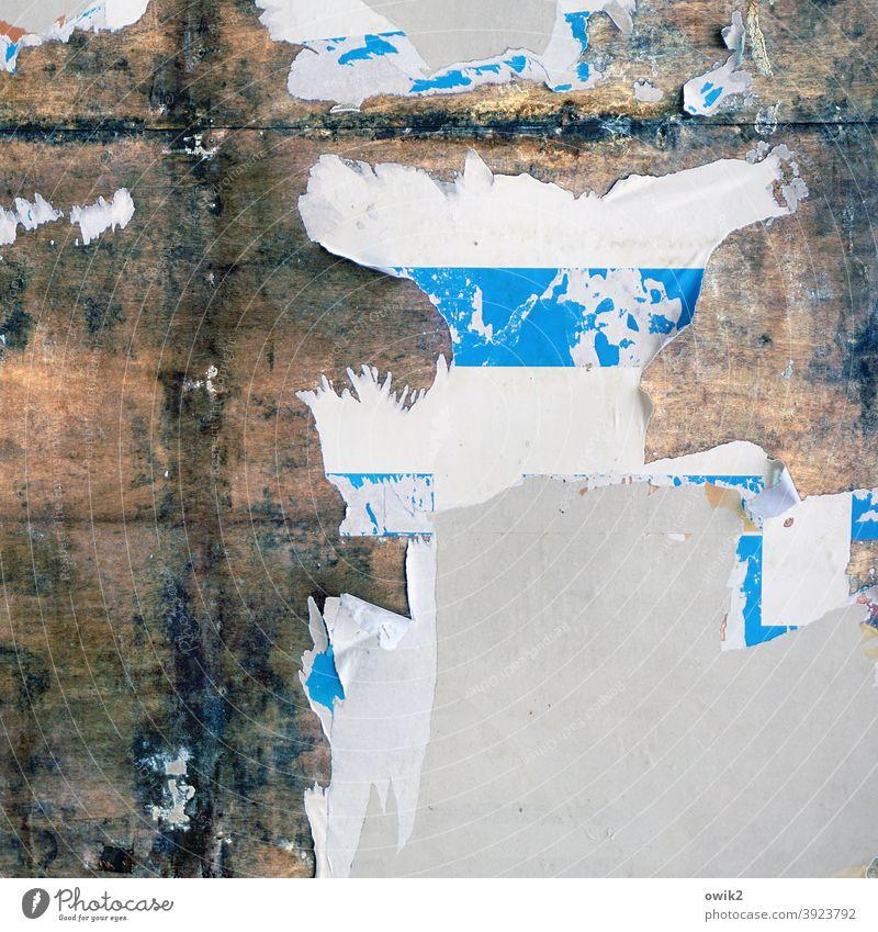 Annalen Reste Papier Plakat Werbung Plakatwand alt Wand Strukturen & Formen Muster Vergänglichkeit mehrfarbig Poster Verfall Detailaufnahme abstrakt Nahaufnahme