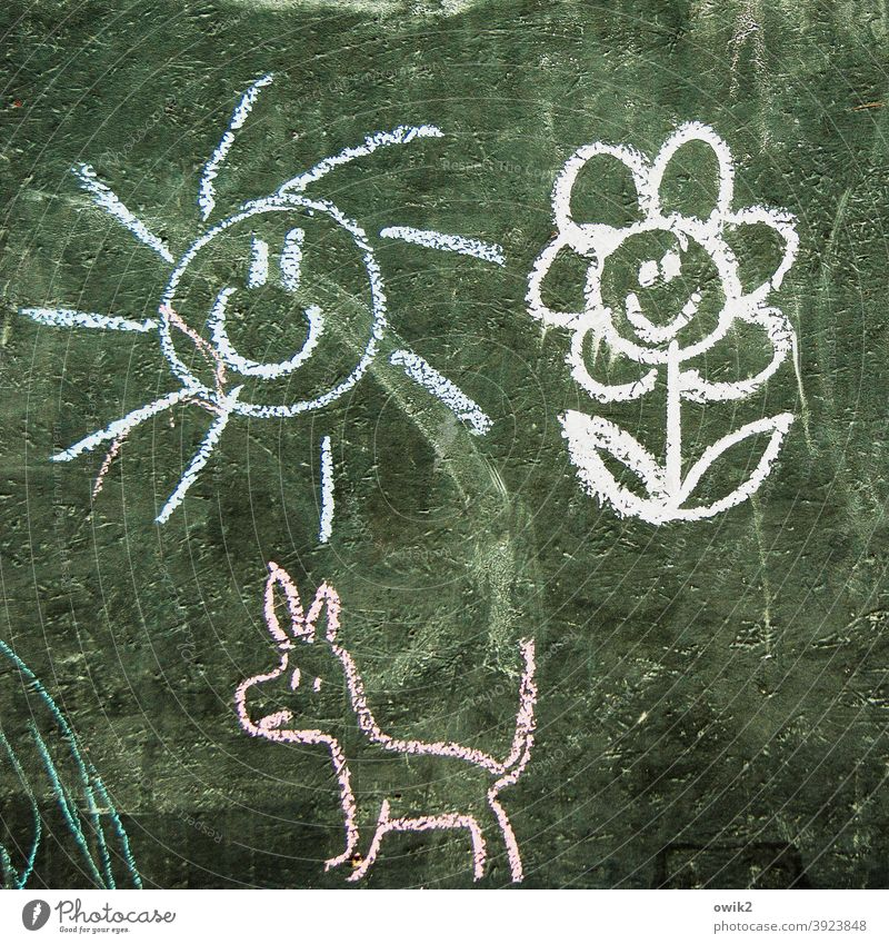 Unverdrossen Strichzeichnung Kreidezeichnung Kunst Außenaufnahme kindlich Farbfoto Freude Kreativität mehrfarbig Kunstwerk einfach Kinderzeichnung