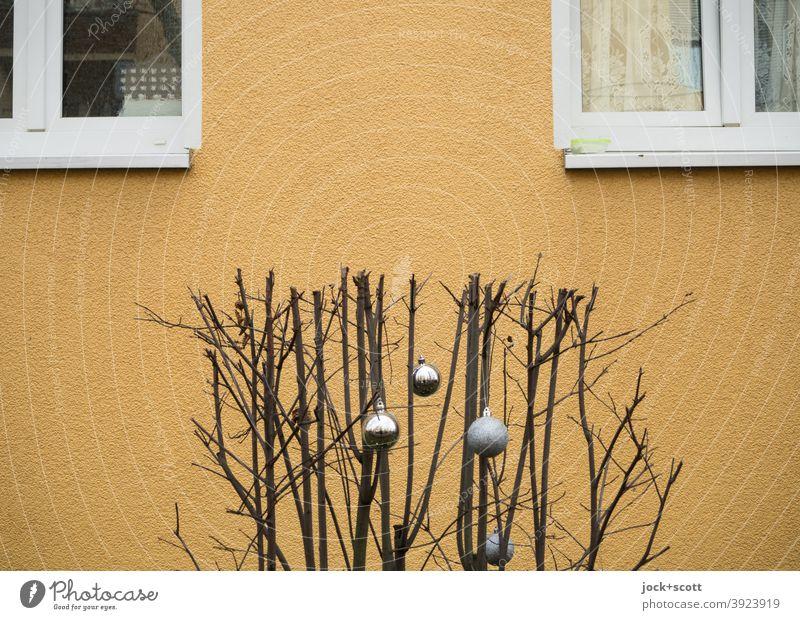 unnatürlicher Winterschnitt mit dekorativen Weihnachtskugeln kahl Pflanze Putzfassade Beige Fenster Vorweihnachtszeit Dekoration & Verzierung