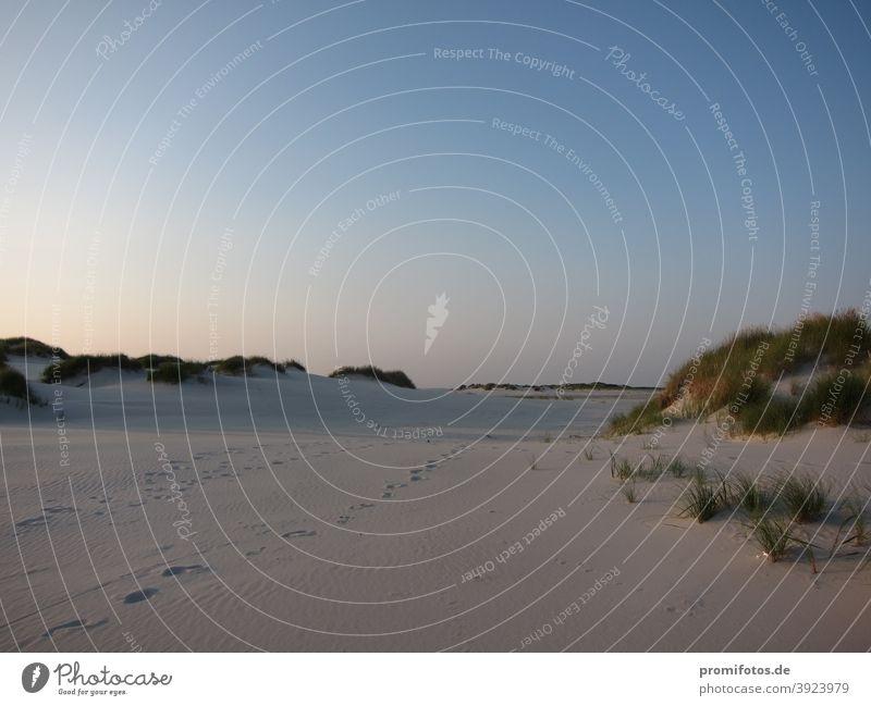 Sandstrand auf Amrum, Deutschland. Foto: Alexander Hauk Sommer sonne sonnenschein Pressereise Pressefahrt Insel Ausflug Tourismus Sehenswürdigkeiten Küste