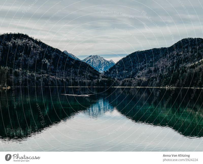 Alpsee im Winter Bergsee Schneebedeckte Gipfel Berge u. Gebirge Wald See klares Wasser türkis Spiegelung bewölkt Natur Landschaft Außenaufnahme Menschenleer