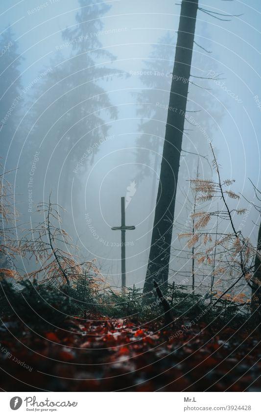 Kreuz im Wald Religion & Glaube Christliches Kreuz Christentum Katholizismus Gott Hoffnung Jesus Christus Kirche Tod heilig Kruzifix katholisch
