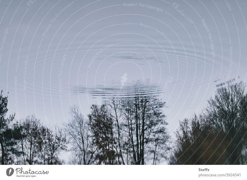 was ist schon real UFO Sichtung außerirdisch Aliens Raumfahrzeug Angst Außerirdische grau Science Fiction fliegende Untertasse graublau Landung ungewiss