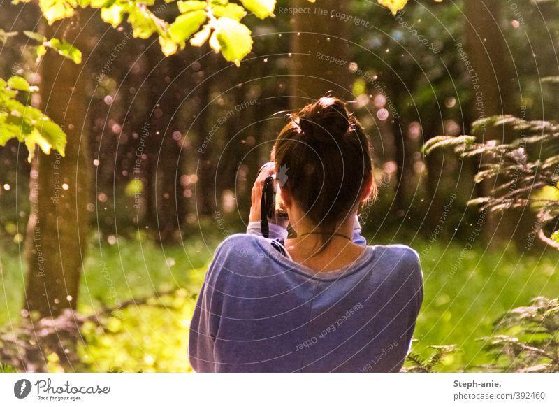 Ein bisschen Zauberei feminin Junge Frau Jugendliche Rücken 1 Mensch Sommer Baum Sträucher Wald beobachten genießen Blick träumen außergewöhnlich frei Neugier
