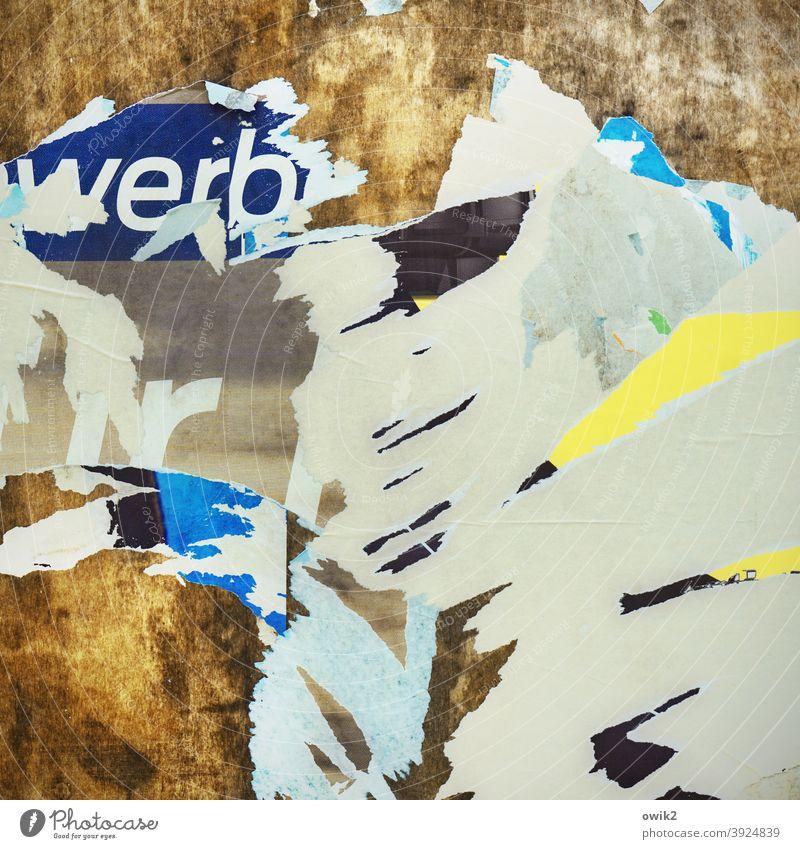 Zerriss Papier Reste Plakat abgerissen verrückt Oberflächenstruktur Zahn der Zeit Vergänglichkeit Verfall Strukturen & Formen Spuren verfallen Menschenleer