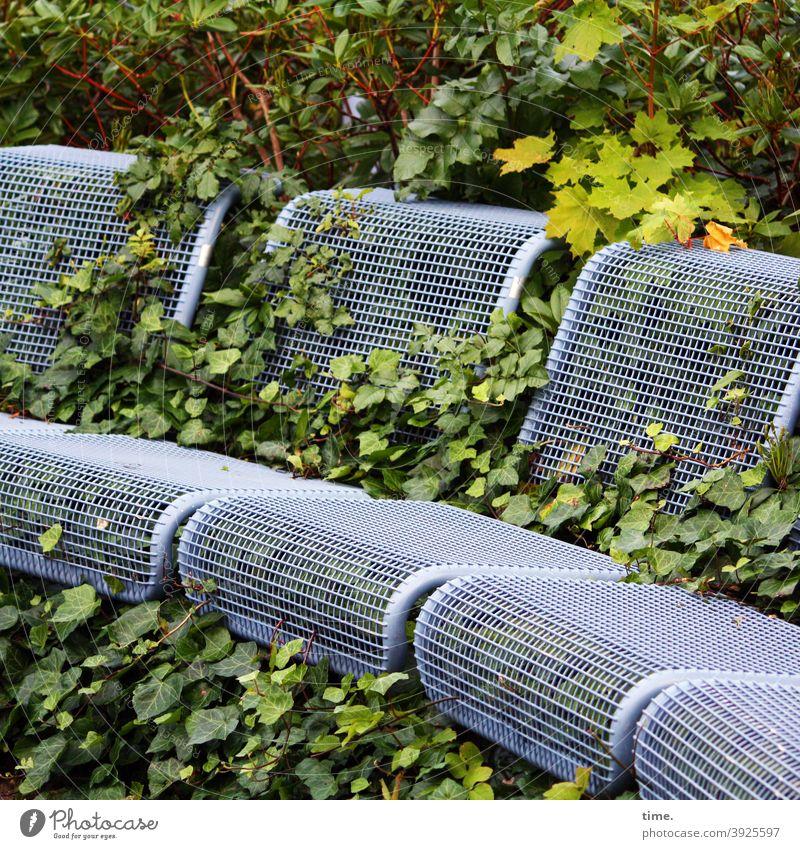unrasiert Sitze Bank efeu Sitzgelegenheit grün kunst wachsen blätter busch überwuchern skurril besitzergreifend invasion natur metall ungepflegt landart