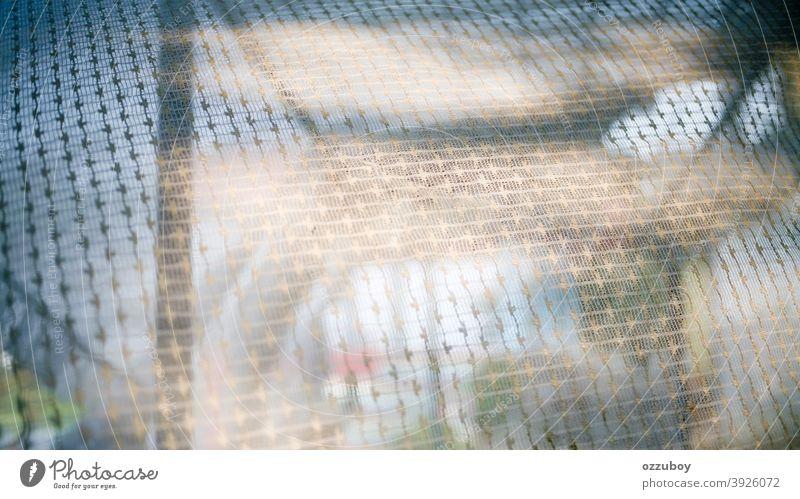 Vorhangmuster Gardine Vorhangstoff Muster Dekoration & Verzierung Gewebe Hintergrund Textil Detailaufnahme Material Textur Design Farbe Oberfläche Textfreiraum
